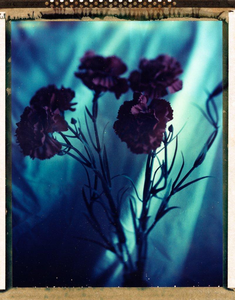 Untitled7.jpg